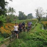 Photo de East Bali Bike Tour