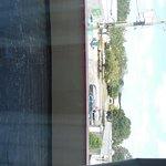 SAM_0573_large.jpg