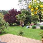 Photo de Les Jardins de Corneilla