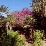Memoire d'Agadir Photo