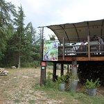 Le bar à plantes
