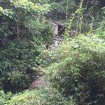 Photo de Yufu River Valley