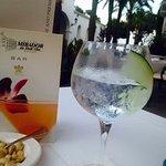 Hendricks/tonic: 'The Gin Club' on the Terrace.