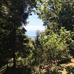 Photo of Centro Trekking a Cavallo Monte Brugiana