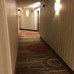 Hampton Inn & Suites Reagan National Airport Foto