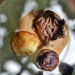 pavè de boeuf et son champignon farçi