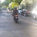 20160813_185740_large.jpg
