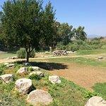 Foto de The Temple of Artemis (Artemision)