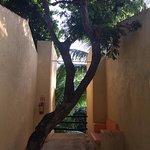 Foto de Hotel LunaSol