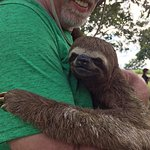 so cute...the sloth, that is ;)