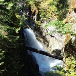 Little Qualicum Falls Park