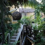 Photo de Maison Tulum