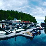 Telegraph Cove Resort Foto