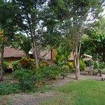 Lena House Foto