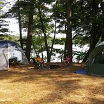 Great campground! Nice and quiet, beautiful views,huge sites and friendly rangers!