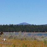 Photo de Howard Prairie Lake
