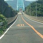 DSC_1376_large.jpg