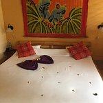 Photo of Samara Palm Lodge