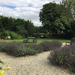 Lovely gardens at the Ragged Cot