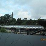 Zdjęcie 206313