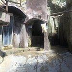 Antiche Terme Romane di Cavascura Foto