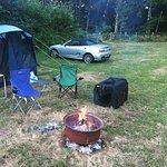 Bedgebury Camping Photo