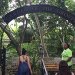 Garden of the Groves Foto