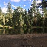 Photo de Bruce Spruce Ranch