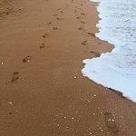 Photo of Praia da Coelha