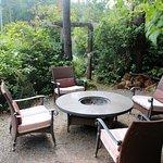 Foto de Cobble Wood Guesthouse and Bird Sanctuary House & Suites