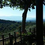 Photo of Agriturismo il Corbezzolo