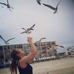 Foto di Daytona Inn Beach Resort