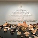 Photo de Museum of Contemporary Art