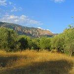 Foto de Camping Armalygal