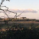 Foto van Fattoria di Fugnano