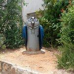 Photo de Ein Hod Artists Village