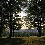 Schenley Park Foto
