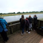 RSPB bird watching site monitoring the young Ospreys at Threave castle