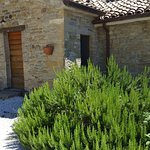 Photo of Agriturismo dei Giuli