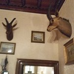 The Rosely Country House Hotel Foto