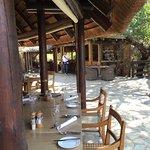 Kapama Buffalo Camp Foto