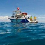 Holiday Diver - Ocean Divers dive boat, Capt Tom and Meghan MacCollum