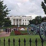 Walk down to the Whitehouse