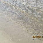 Aguas de la playa Ferrando