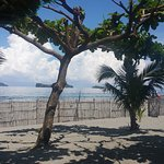 Great beach view.