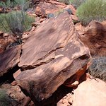 Foto di Kings Canyon