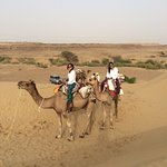 Our camel safari arranged by Nomads Guest House