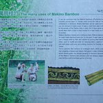 Short walking trail with information in both English and Chinese