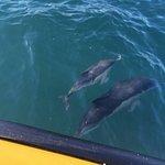 Foto de Tenby Boat Trips