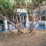 Photo of Villa Danialla Beach Resort